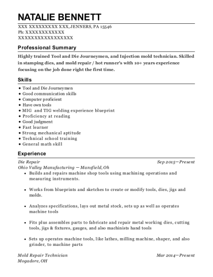 Ventra Injection Mold Tool Manager Resume Sample - Hastings