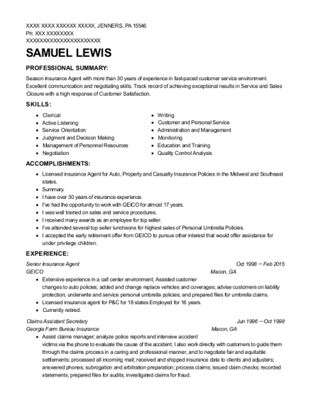 Senior Insurance Agent resume template Pennsylvania