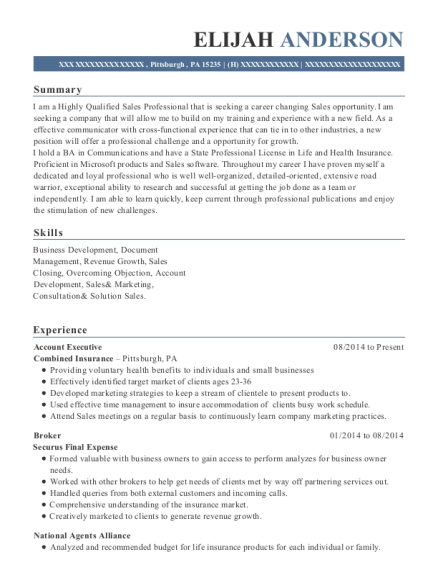 Account Executive resume template Pennsylvania