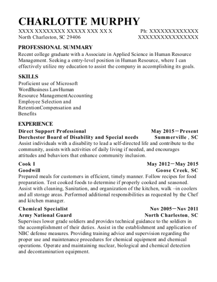 Direct Support Professional resume example South Carolina
