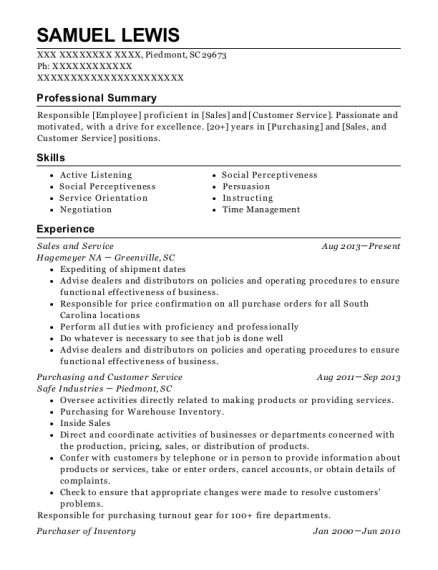 Sales and Service resume format South Carolina
