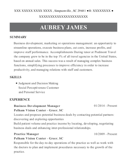 Business Development Manager resume example South Carolina