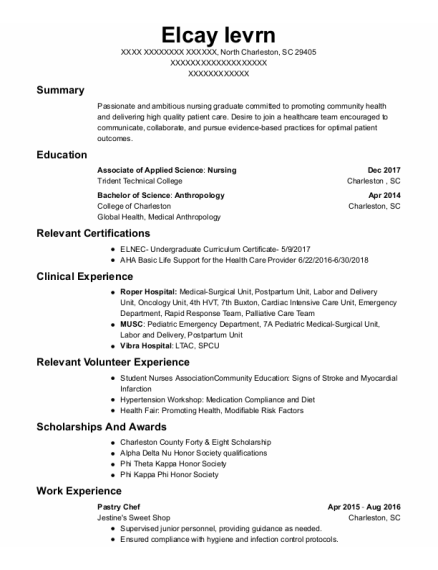 Pastry chef professional resume college work experience essay