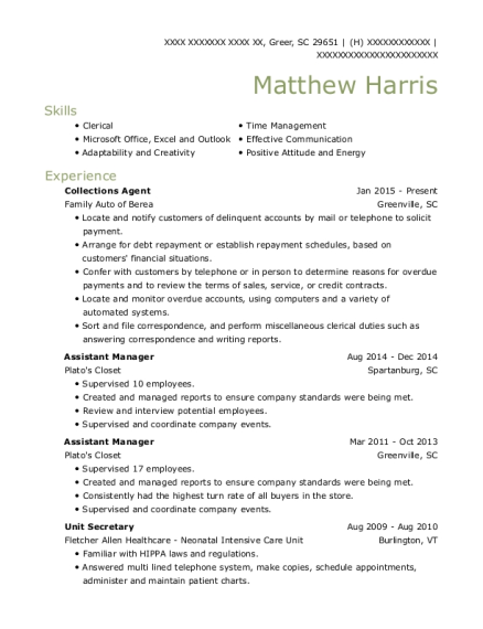 Collections Agent resume template South Carolina