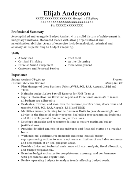 Budget Analyst GS 560 12 resume format Tennessee