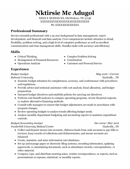 Budget Analyst resume example Tennessee