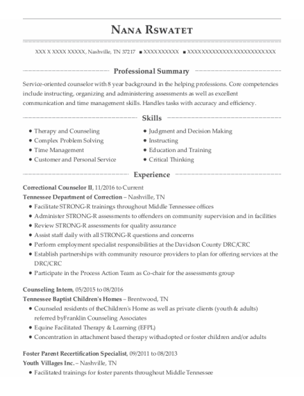 Counseling Intern resume sample Tennessee