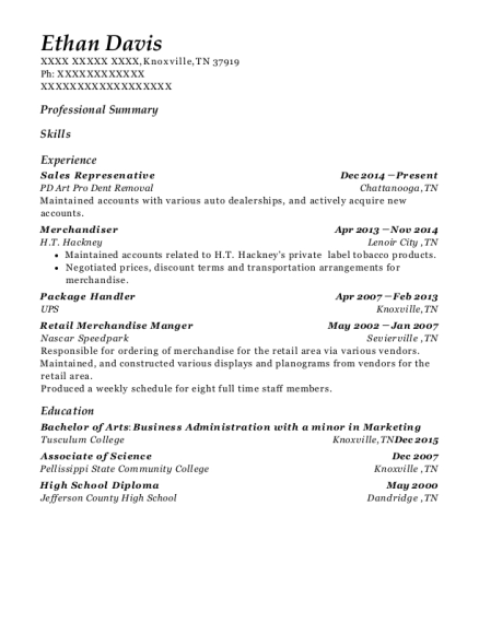 Sales Represenative resume format Tennessee