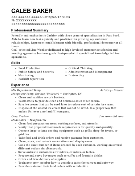 Mix Department Temp resume format Tennessee
