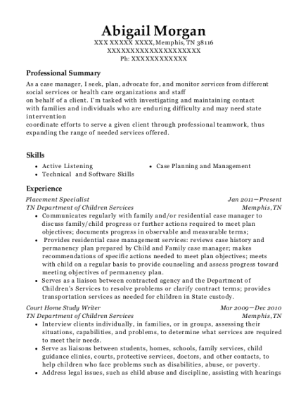 Placement Specialist resume example Tennessee