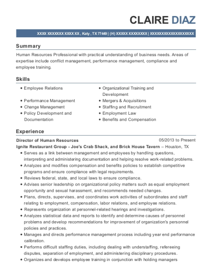 Director of Human Resources resume template Texas