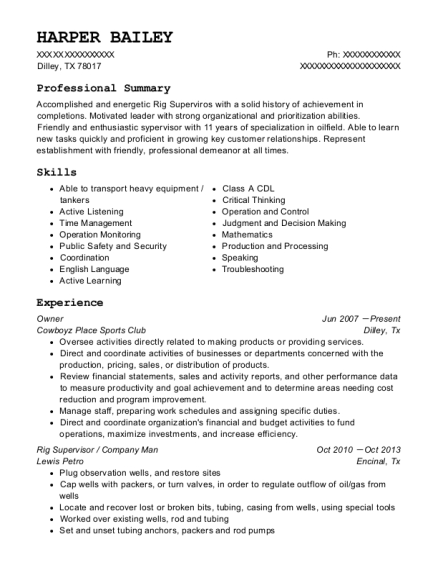 Owner resume sample Texas
