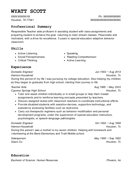 Domestic Engineer resume format Texas
