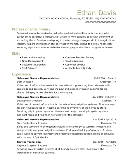 Sales and Service Representative resume template Texas