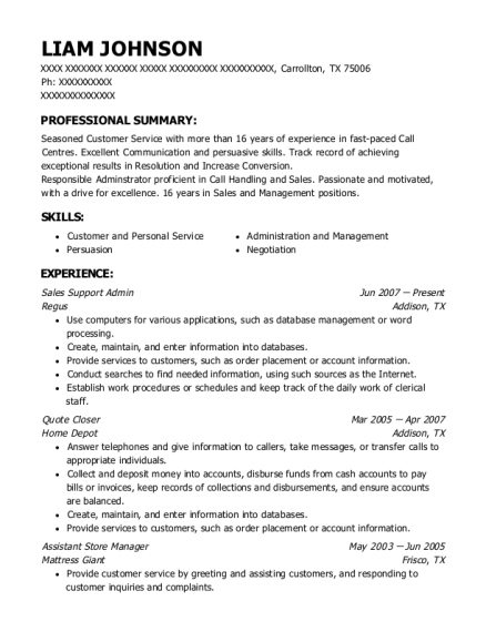 Sales Support Admin resume sample Texas