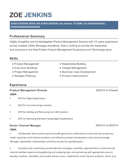 Product Management Director resume format Texas