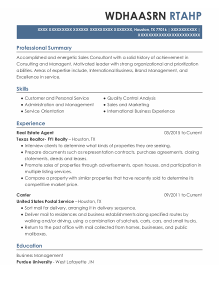 Real Estate Agent resume template Texas