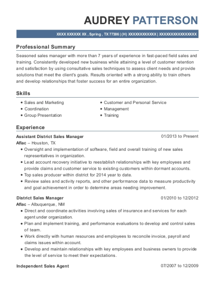Assistant District Sales Manager resume format Texas