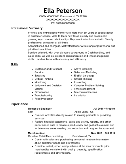 Domestic Engineer resume template Texas