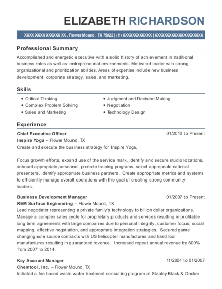 Chief Executive Officer resume sample Texas
