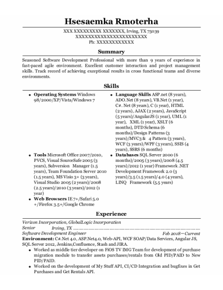 Software Consultant resume example Texas