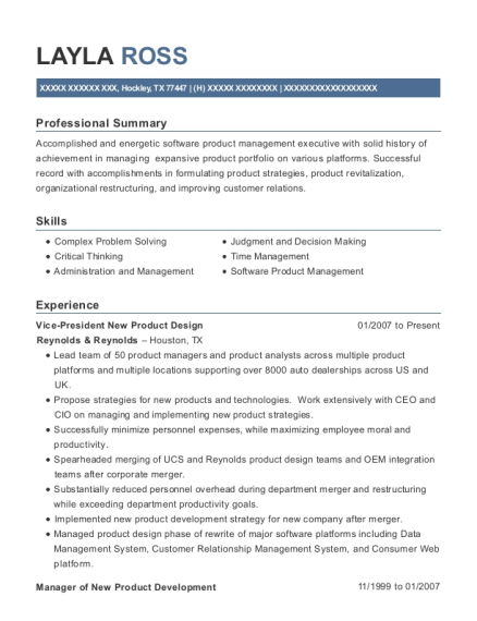 Vice President New Product Design resume format Texas