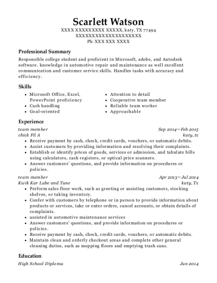 team member resume template Texas