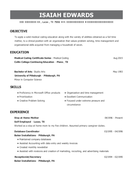Stay at Home Mother resume sample Texas