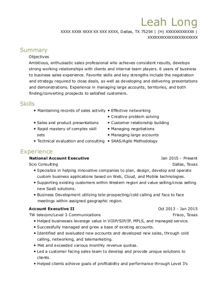 National Account Executive resume format Texas