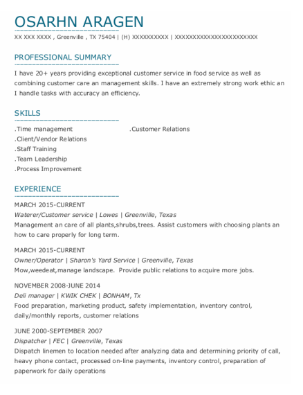 Owner resume template Texas