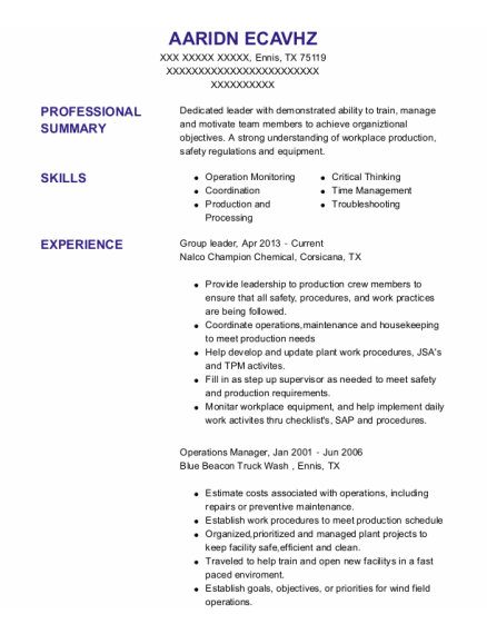 Group Leader resume example Texas