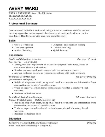 Credit and Collections Associate resume template Texas