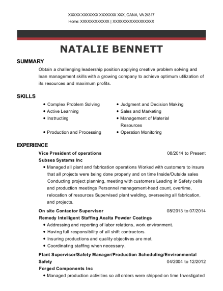 Vice President of operations resume example Virginia