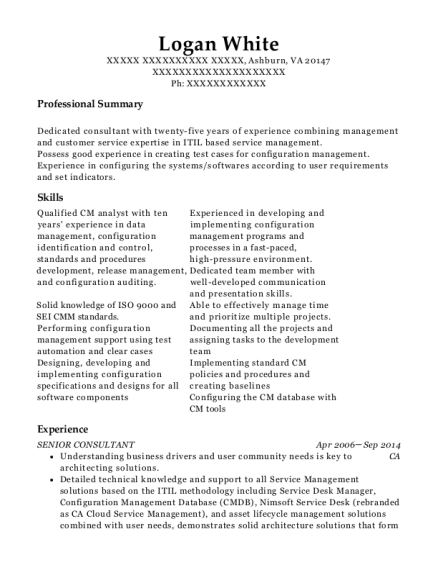 Senior Consultant resume example Virginia