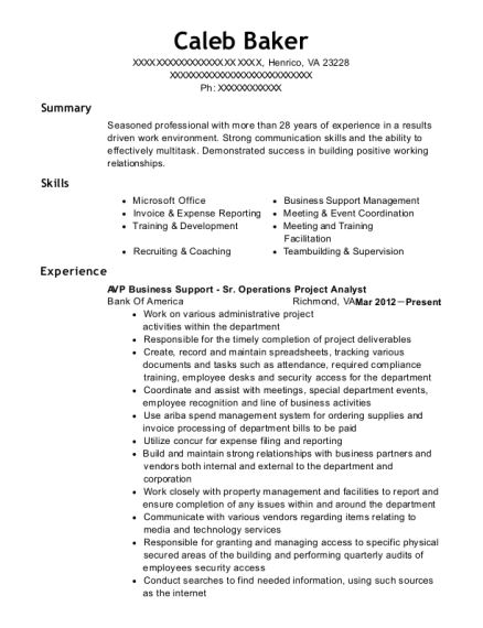 AVP Business Support Sr Operations Project Analyst resume template Virginia
