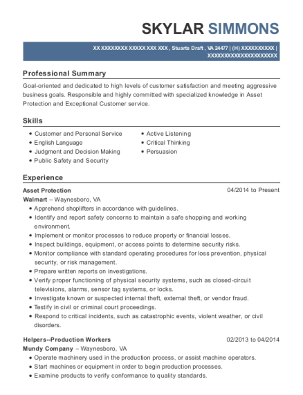Asset Protection resume example Virginia