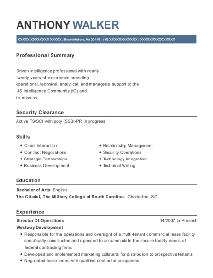 Director of Operations resume sample Virginia