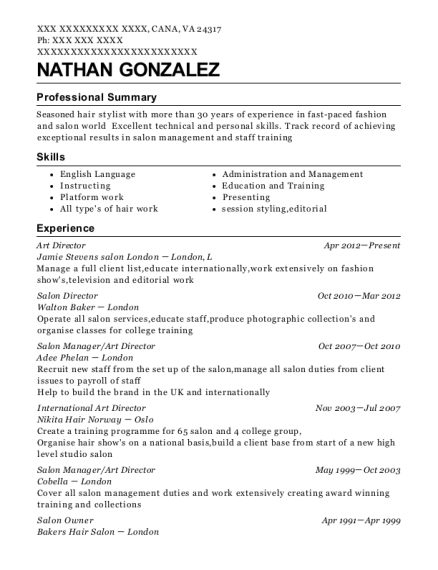 Art Director resume sample Virginia