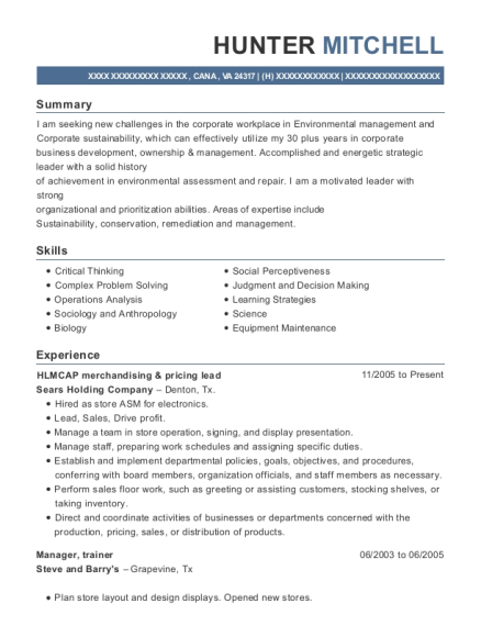 HLMCAP merchandising & pricing lead resume sample Virginia