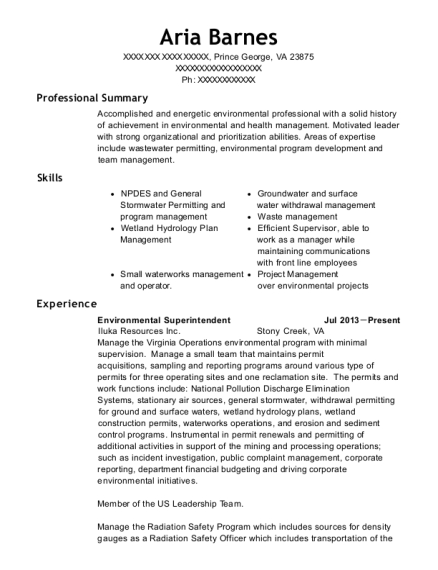 united states air force command chief master sergeant resume sample