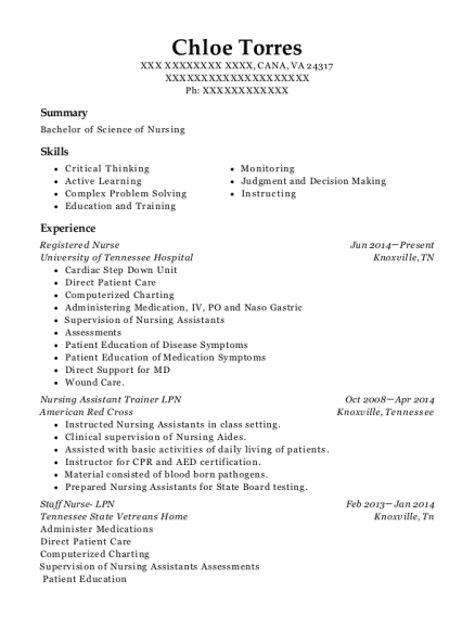 Registered Nurse resume format Virginia