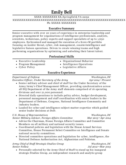 Executive Officer resume example Virginia