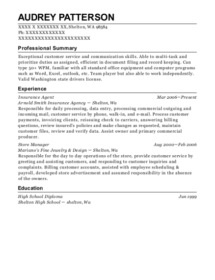 Insurance Agent resume sample Washington