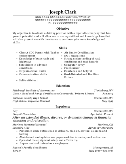Stay At Home Mom resume template West Virginia